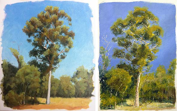 Tree Studies in Oil Paint