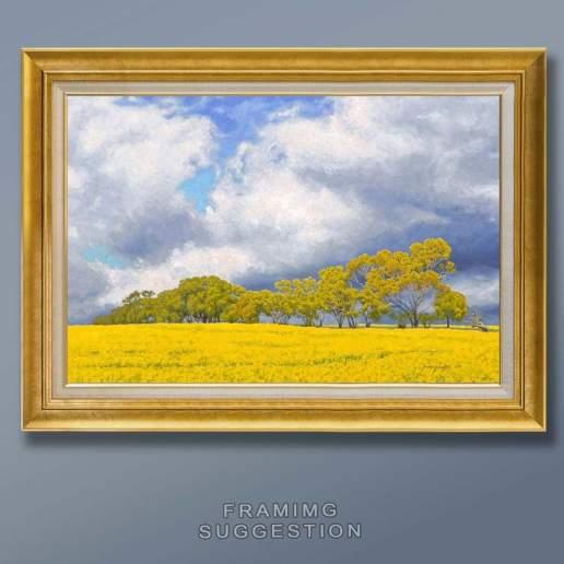 Canola in Bloom framing 2