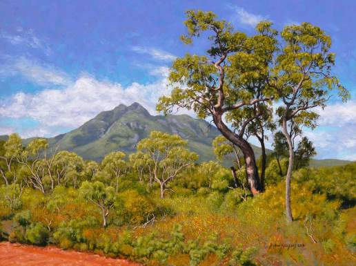 Landscape Stirling Range Australian Landscape Oil Painting by Michael Hodgkins