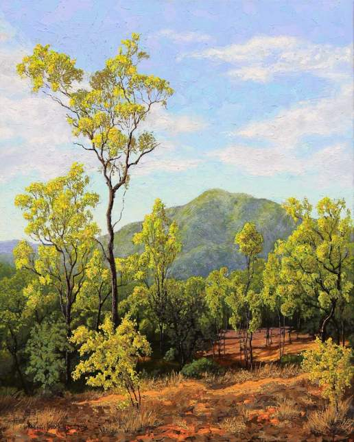 Afternoon In The Leichardt Range - Australian Landscape Oil Painting by Michael Hodgkins