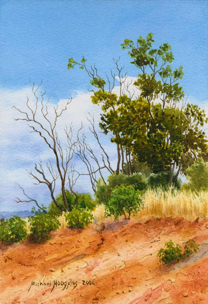Bindoon Hillside - Australian Landscape Watercolour Painting by Michael Hodgkins