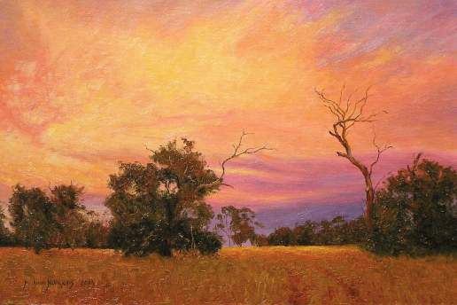 Bush Sunset - Australian Landscape Oil Painting by Michael Hodgkins
