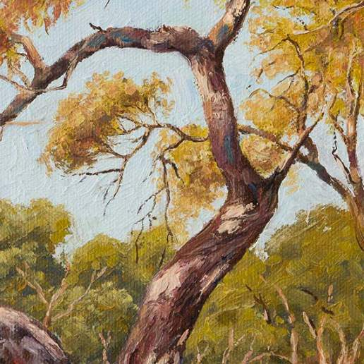 Darling River Tree Study 2 - Australian Landscape Oil Painting by Michael Hodgkins