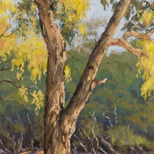 Darling River Tree Study 3 - Australian Landscape Oil Painting by Michael Hodgkins