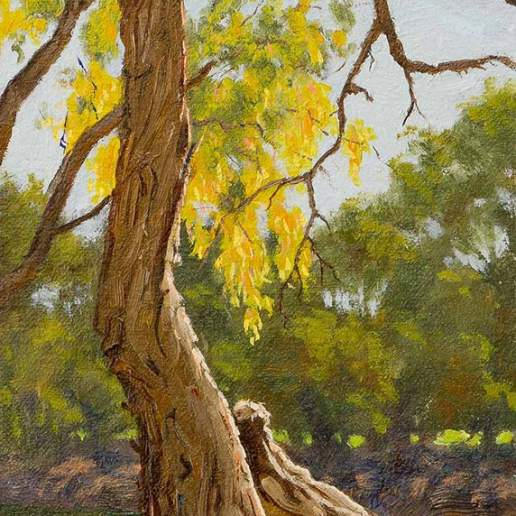 Darling River Tree Study 4 - Australian Landscape Oil Painting by Michael Hodgkins