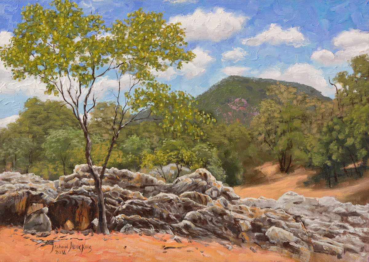 Eight Mile Creek - Australian Landscape Oil Painting by Michael Hodgkins