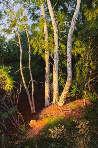 My Sanctuary, Where the Warm Trees Glow - Australian Landscape Oil Painting by Michael Hodgkins