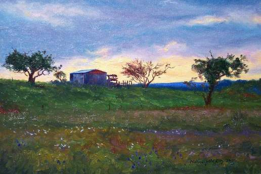 Shed on the Hill Near Home - Australian Landscape Oil Painting by Michael Hodgkins